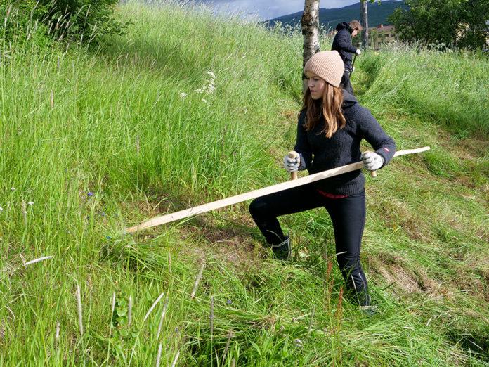 Caroline Røste slår gresset på gamlemåten med ljå. Foto: Iver Waldahl Lillegjære